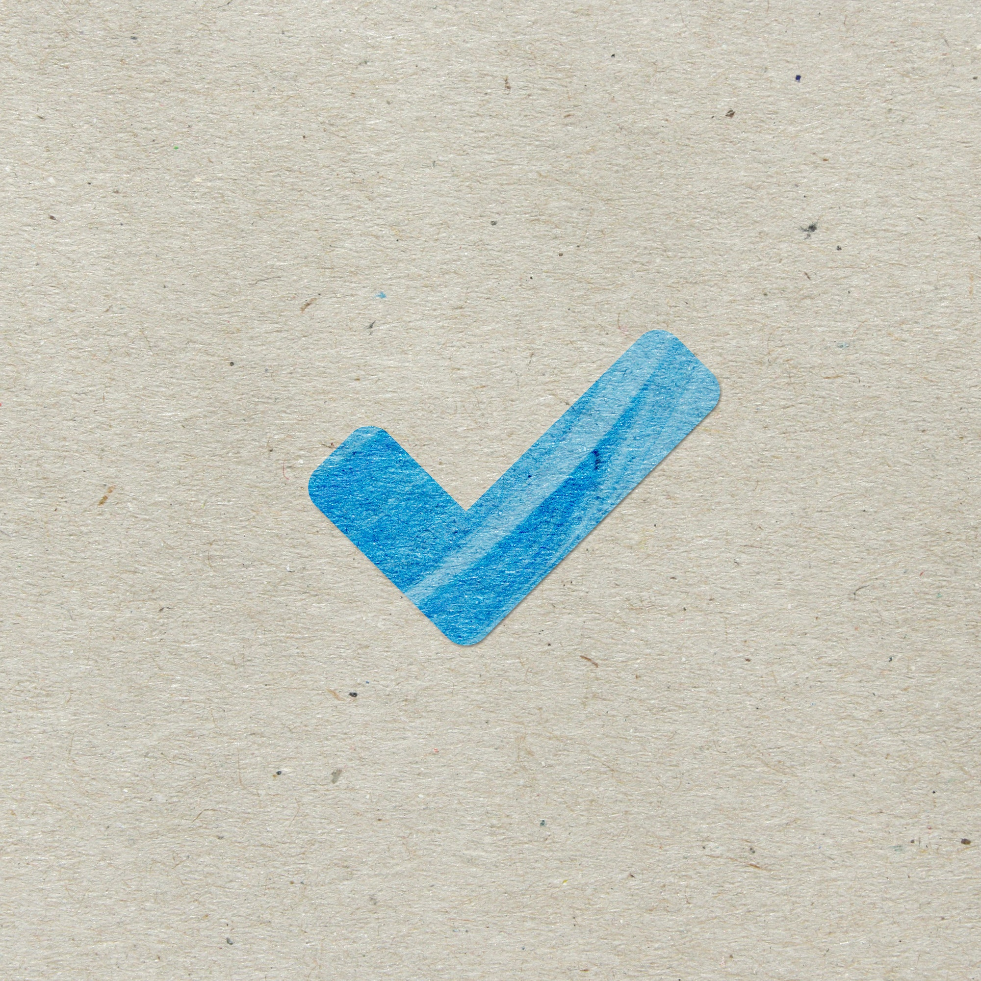 Check Mark paint icon